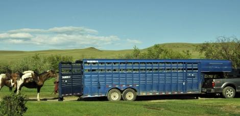 chucks trailer