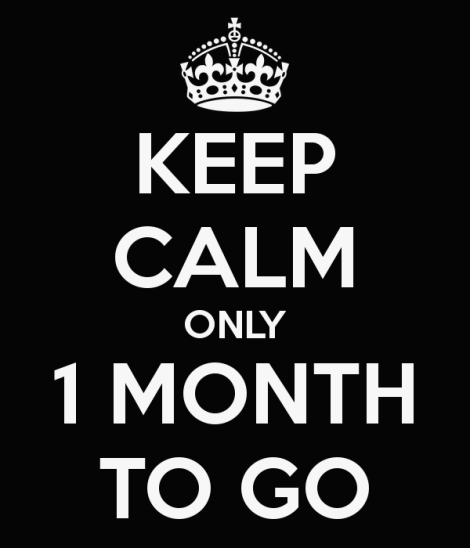 keep-calm-only-1-month-to-go-9